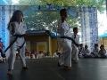 CBP-FeriaFamiliar_karate_21_2015