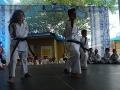 CBP-FeriaFamiliar_karate_22_2015