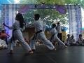 CBP-FeriaFamiliar_karate_23_2015