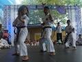 CBP-FeriaFamiliar_karate_25_2015