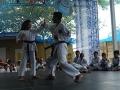 CBP-FeriaFamiliar_karate_27_2015