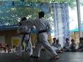 CBP-FeriaFamiliar_karate_29_2015