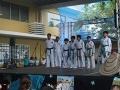 CBP-FeriaFamiliar_karate_2_2015