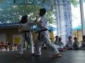 CBP-FeriaFamiliar_karate_30_2015